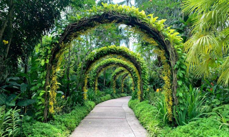 Kawasan Kebun Botani