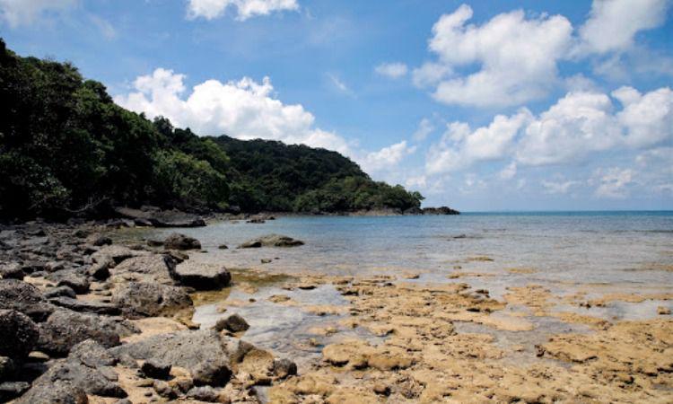 Pantai Pulau Tenggol